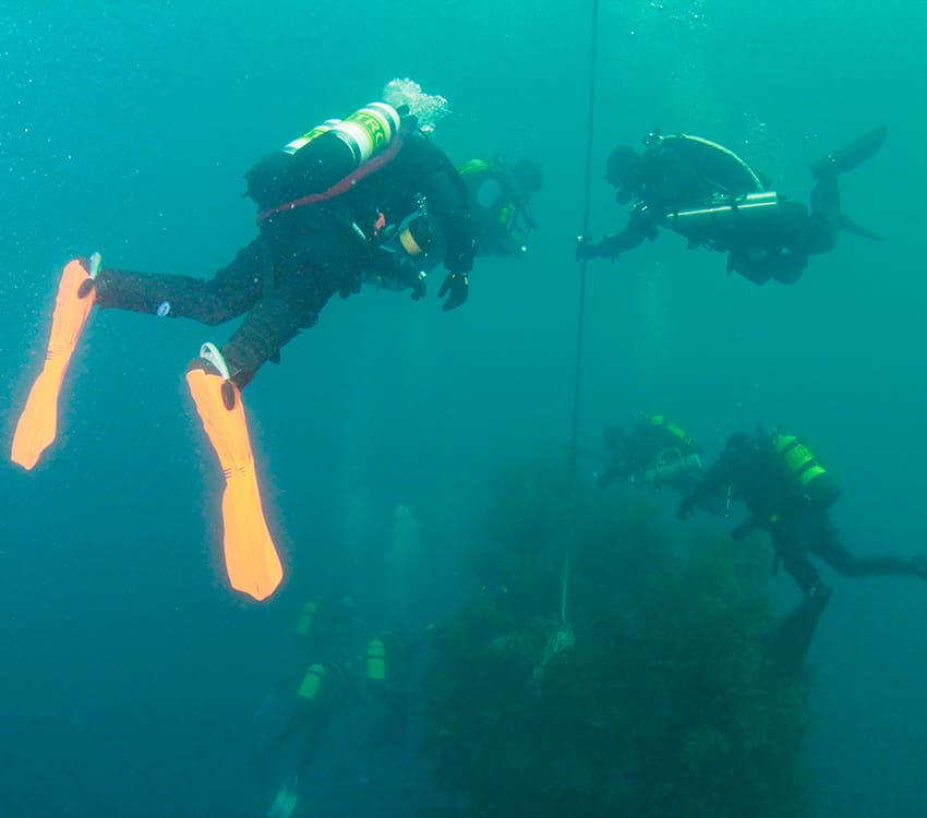 PADI Enriched Air NITROX Course Diver on the Canterbury Wreck learning to dive with Dive Now Whangarei
