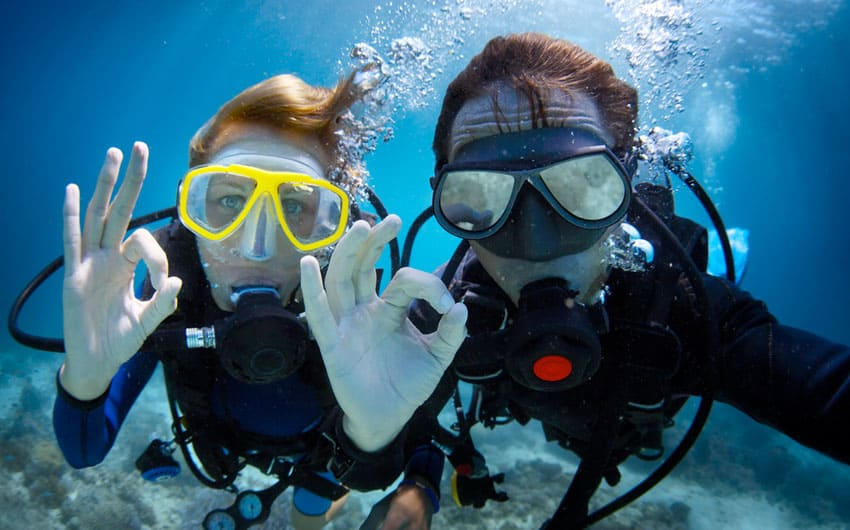 Dive Now Whangarei, Scuba Diving Trips to the Poor Knights