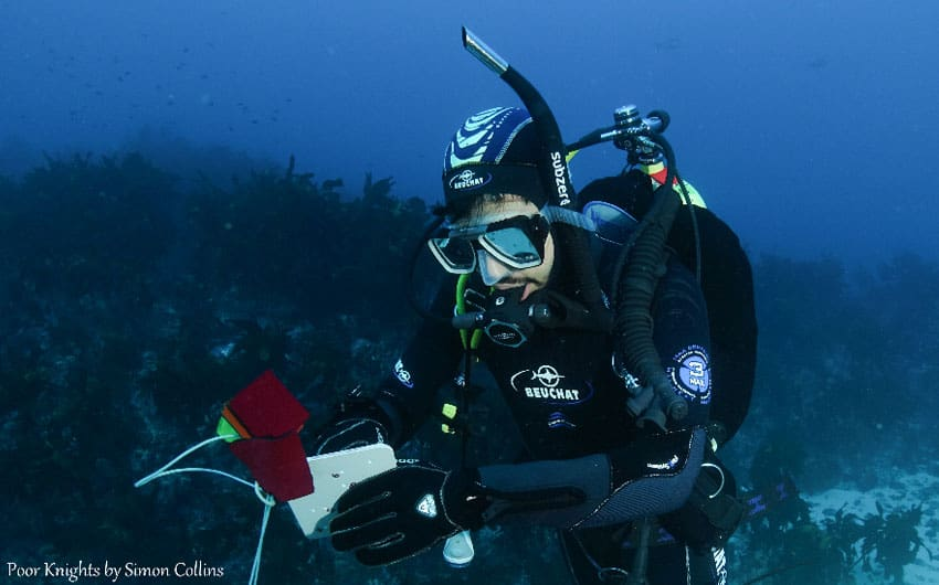 Dive Now PADI Specialty Courses