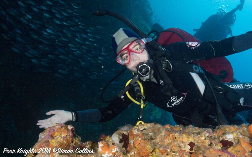 PADI Open Water Course Dive Now